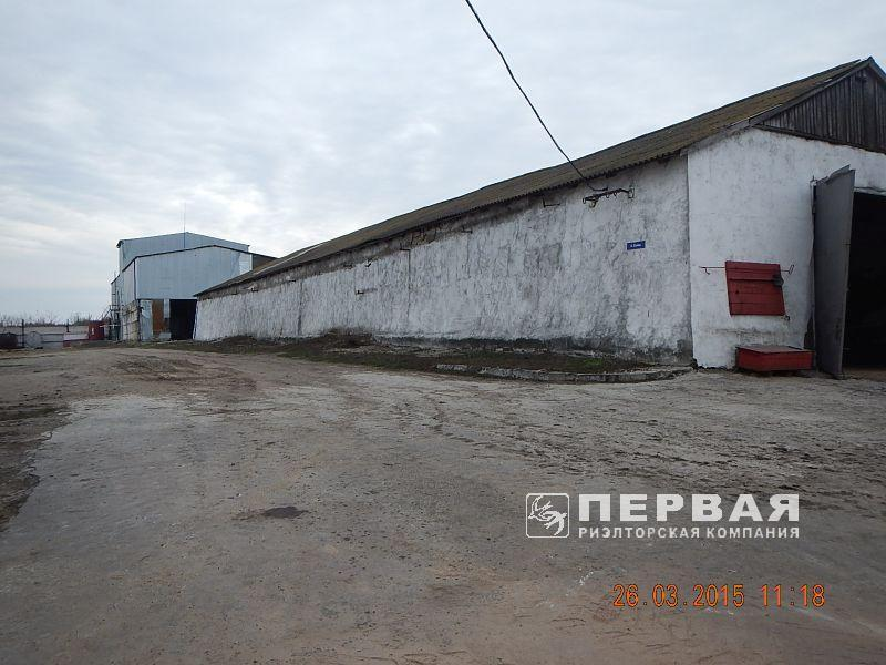 A factory of natural products. Berezovka