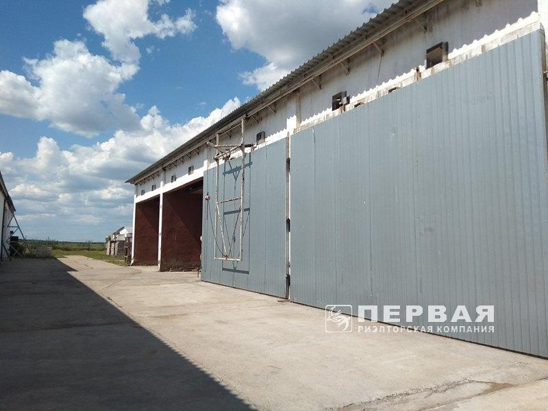 Company of wood processing for sale.